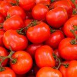 トマトにはリコピンという栄養成分が含まれその効能とは?